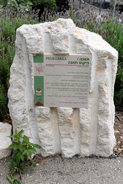 שלטים בעיצוב אישי פארק הגליל, כרמיאל