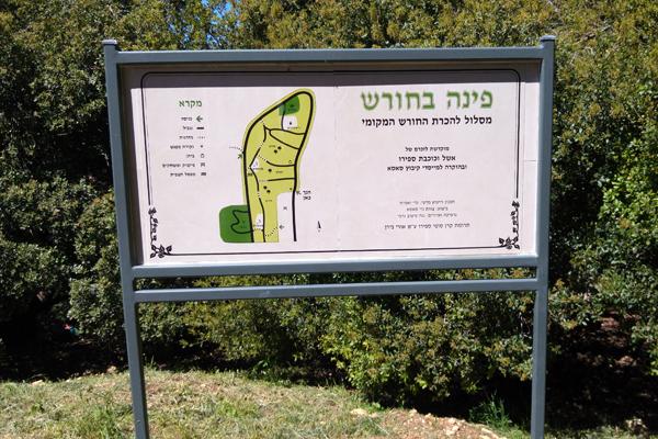 שלטים בעיצוב אישי קבוץ סאסא-שלט כניסה